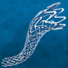 Boston Scientific's REBEL bare metal stent