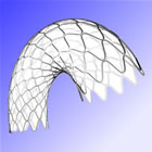 Resolute Drug-Eluting Stent